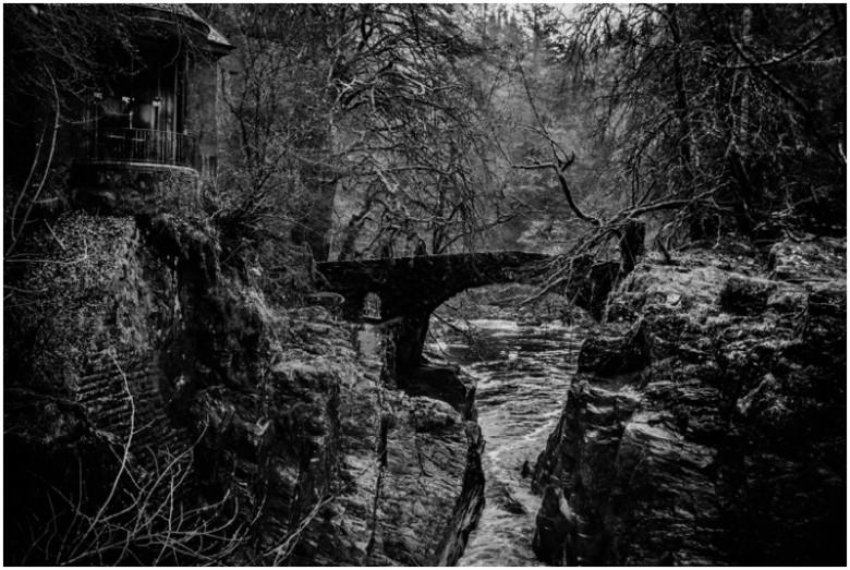 scottish forest and river landscape